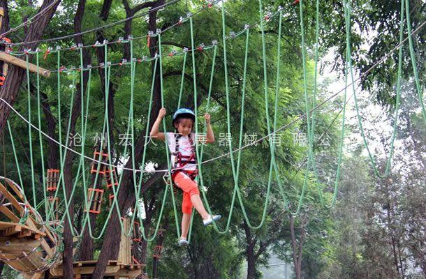 丛林吊绳桥-森林探险-树上丛林穿越