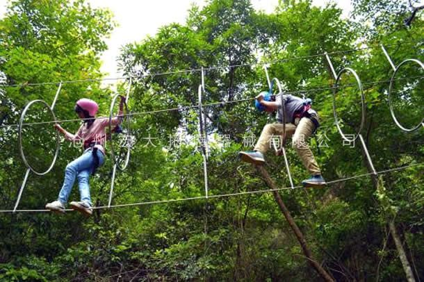 丛林环环相扣-丛林拓展设备-丛林探险器械