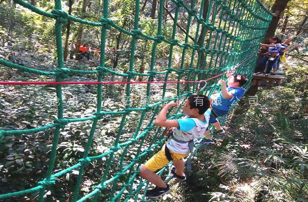 丛林网绳桥-树上探险设备-丛林穿越