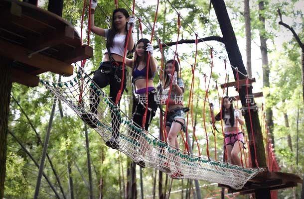 丛林踏网-丛林探险乐园-穿越丛林