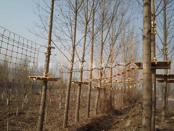 丛林拓展设备  丛林探险器械  丛林探险  树上拓展设备