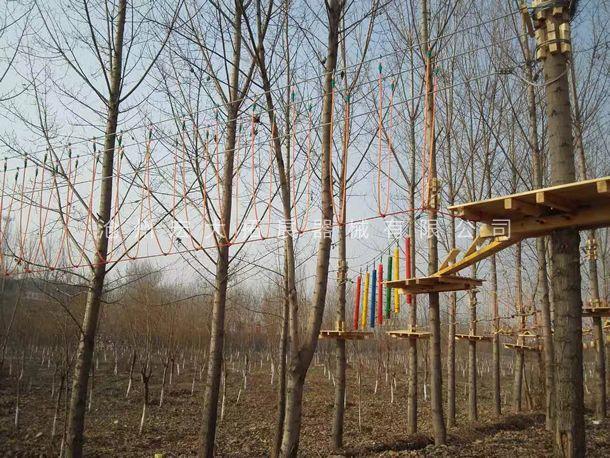 穿越丛林  丛林探险设备  树上拓展