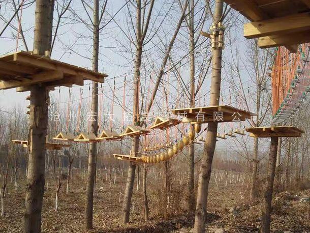 丛林探险设备  树上拓展  森林探险  树上丛林穿越