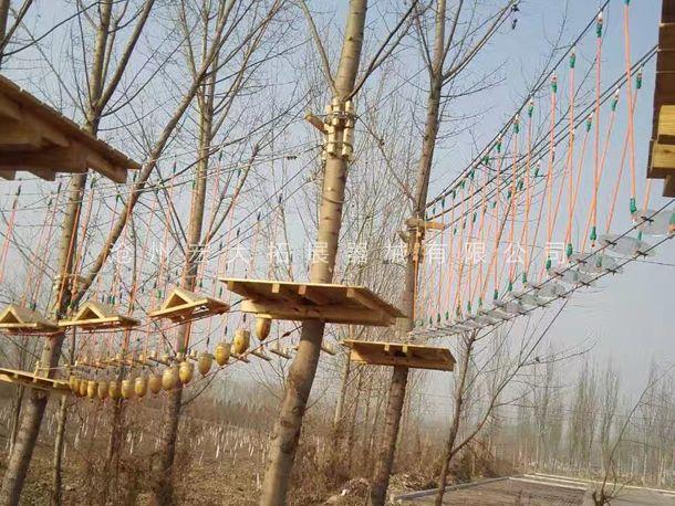 丛林探险器械  丛林探险  树上拓展设备  树上探险设备