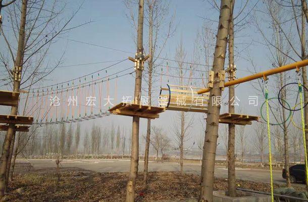 山东省枣庄丛林探险器材,树上拓展探险设备安装完工