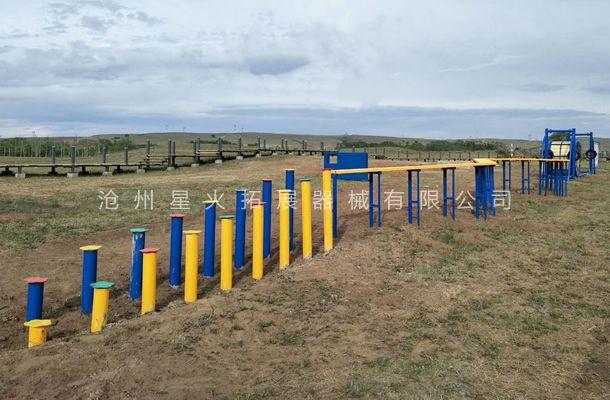 步步高曲折桥-场地拓展器械-户外拓展器材