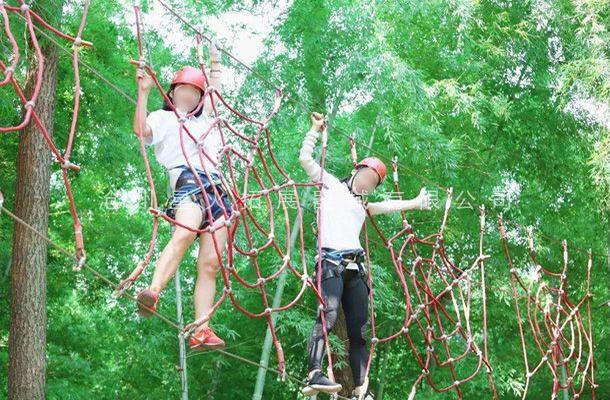 丛林蜘蛛网-丛林探险-树上拓展设备