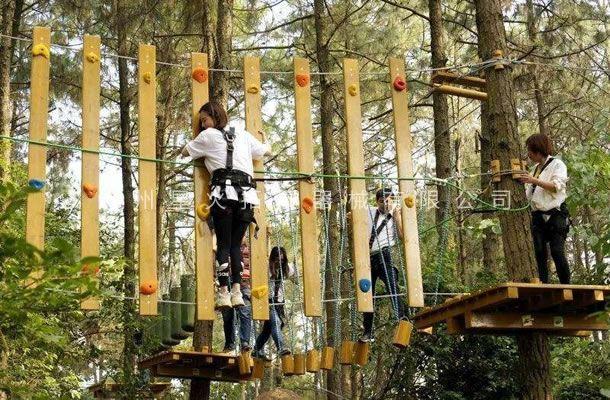 树上拓展设备
