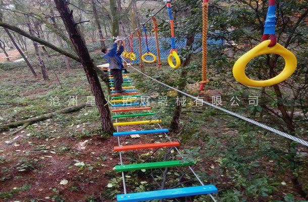 丛林泸定桥-丛林探险设备-树上拓展
