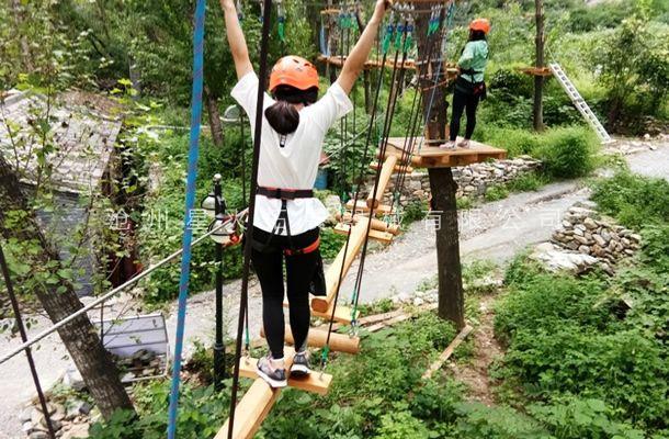 丛林工字桥-丛林探险乐园-穿越丛林器材