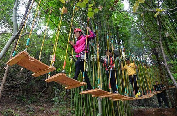 丛林吊板桥-丛林拓展设备-丛林探险器械