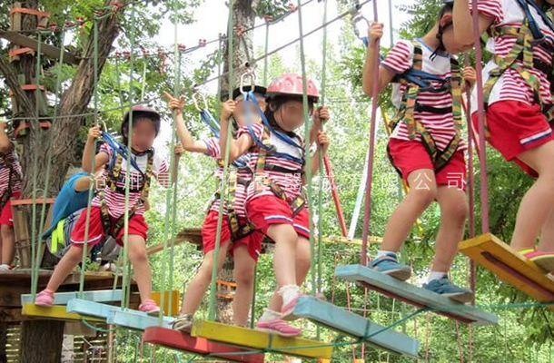 丛林秋千桥-树上探险设备-丛林穿越